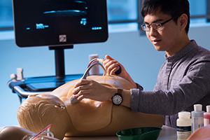 FUSE Ultrasound Guided Simulator Vascular Access
