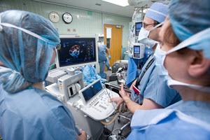 SCA-On-CUE 科目7: 经食管超声心动图 TEE